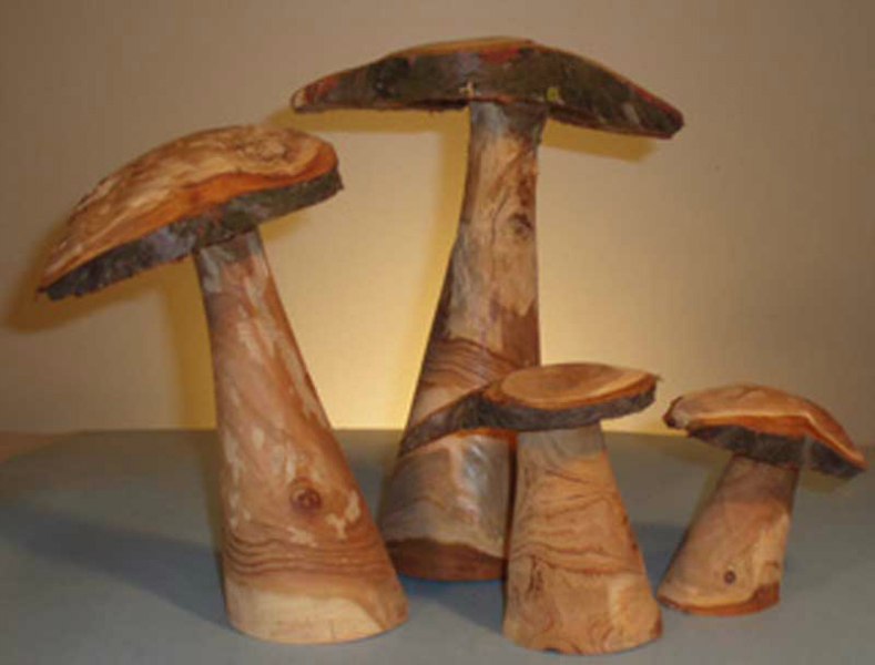 #5003 Mushrooms